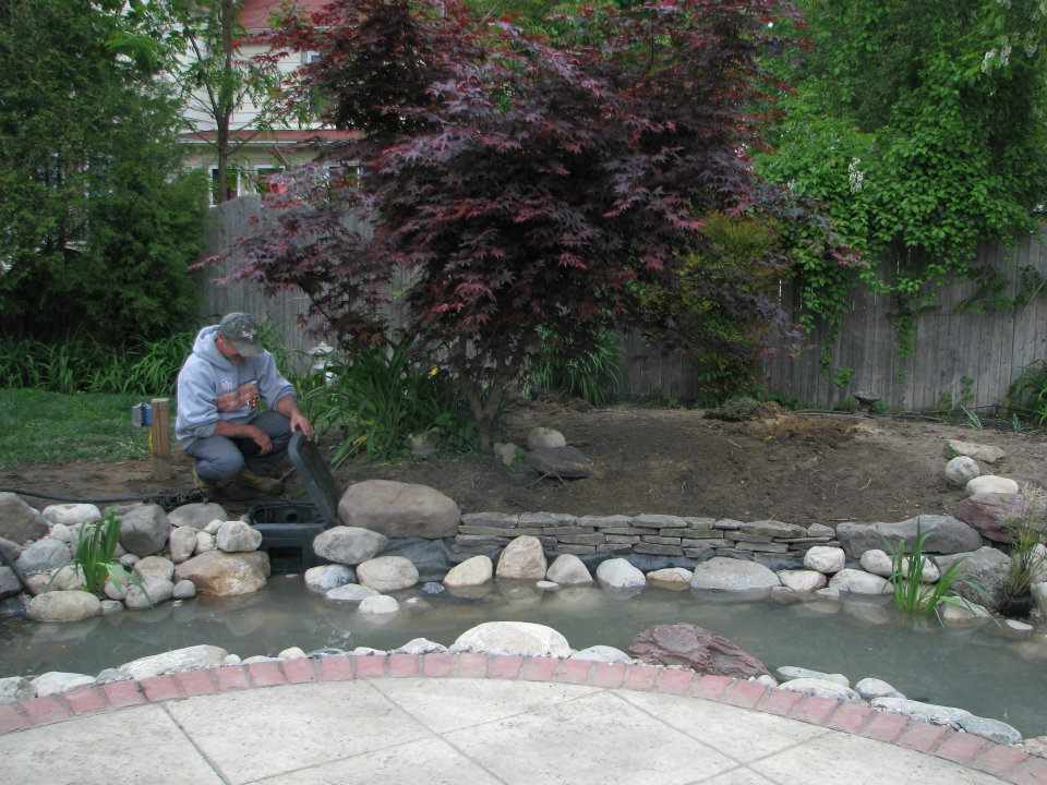 Pond maintenance contractor services downers grove dupage for Maintaining a garden pond